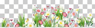 Flower Grasses PNG