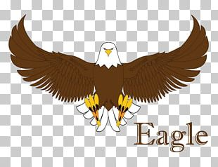 Bald Eagle Statue Of Liberty Logo Beak PNG