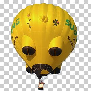 Hot Air Balloon Wedding Flight PNG