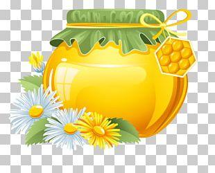 Honey Bee Honey Bee Cartoon PNG