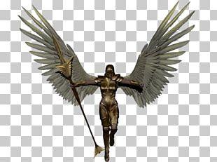 League Of Angels Desktop PNG