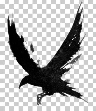 Tattoo Crow Common Raven Bird Black-and-gray PNG
