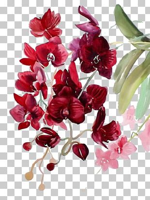Watercolor Painting Watercolor: Flowers Watercolour Flowers Orchids PNG