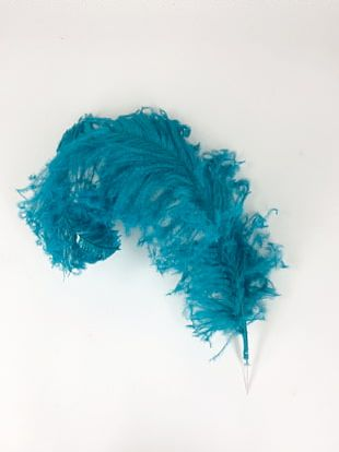 Common Ostrich Feather Boa Turquoise Teal PNG