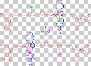 Rotaxane Anioi Molecular Shuttle Molecule Coordination Complex PNG
