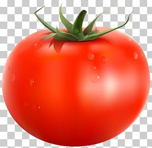Papua New Guinea Tomato Vegetable PNG