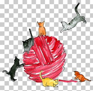 Cat Kitty Ball Illustration PNG