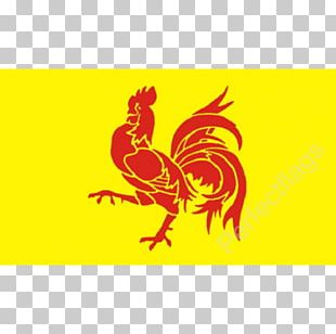French Community Of Belgium Flag Of Wallonia Jolly Roger Flag Of Belgium PNG