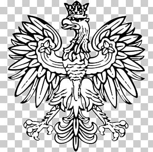 Coat Of Arms Of Poland Eagle Flag Of Poland T-shirt PNG