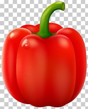 Philadelphia Pepper Pot Bell Pepper Chili Pepper PNG