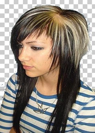 Hairstyle Scene Hair Coloring Human Hair Color PNG