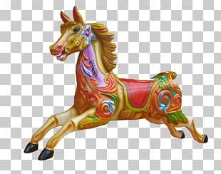 Horse Carousel Amusement Park PNG