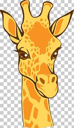 Northern Giraffe Lion Euclidean Illustration PNG