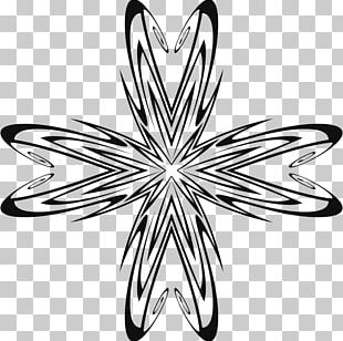 Portable Network Graphics Sacred Lotus Computer Icons PNG