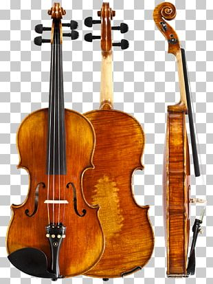Amati Violin Musical Instruments String Instruments Stradivarius PNG