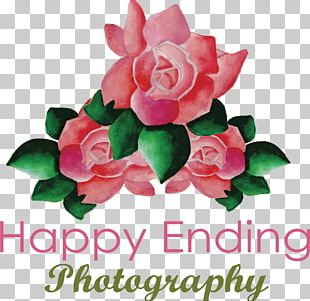 Wedding Invitation Pink PNG