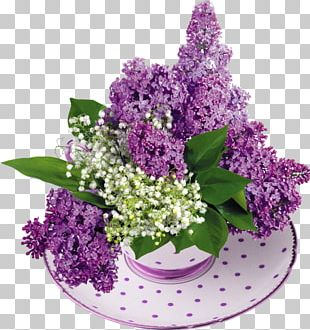 Common Lilac Lily Of The Valley Flower Garden PNG