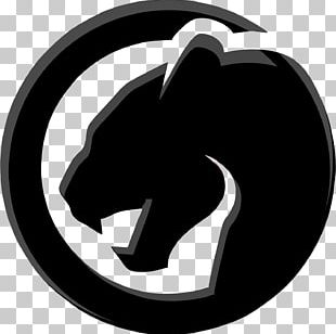 Black Panther Photography Cougar Drawing PNG