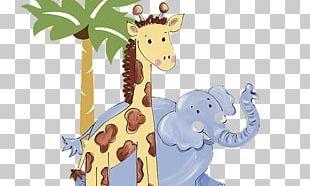 Giraffe Baby Zoo Animals Baby Jungle Animals PNG