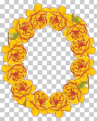 Frames Flower Oval Rose PNG
