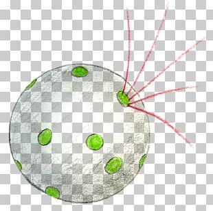 Bacteria Microorganism Germ Theory Of Disease Physics Prokaryote PNG