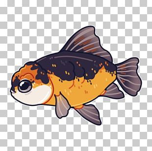 Oranda Ryukin Ranchu Shubunkin Fish PNG