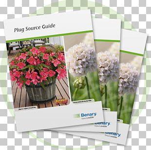 Floral Design Artificial Flower Wax Begonia Flowerpot PNG