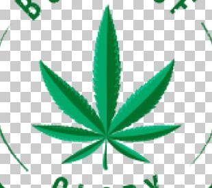Medical Cannabis Cannabidiol Medical Marijuana Card PNG