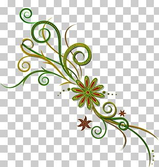 Floral Ornament CD-ROM And Book Portable Network Graphics Floral Design PNG