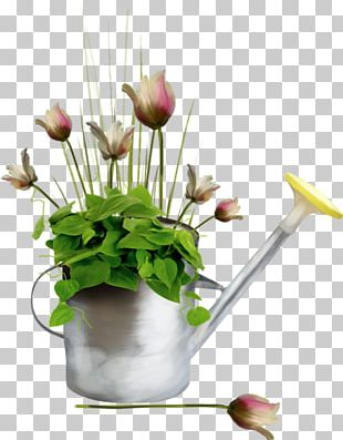 June Floral Design Internet Forum Watering Cans PNG