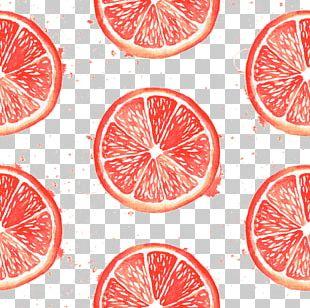 Grapefruit Pomelo Blood Orange PNG