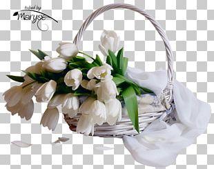Flower Bouquet Tulip Ansichtkaart Daytime PNG