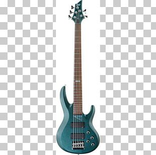 Bass Guitar String Instruments Neck ESP Guitars PNG