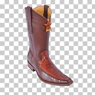 Common Ostrich Cowboy Boot Leather PNG