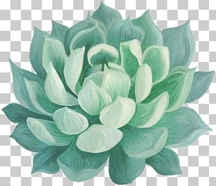 Succulent Plant Paper Drawing Watercolor Painting PNG