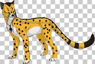 Cheetah Leopard Ocelot Lion Felidae PNG