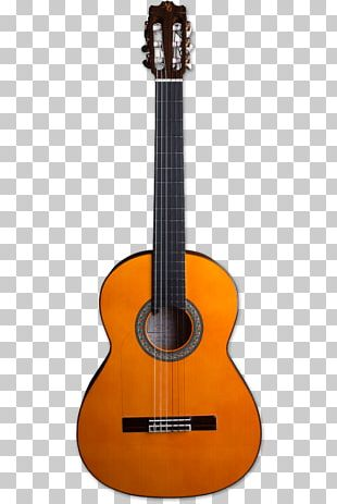 Ukulele Classical Guitar Cordoba C7 Musical Instruments PNG