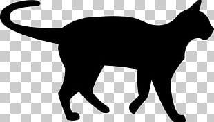Black Cat Silhouette PNG