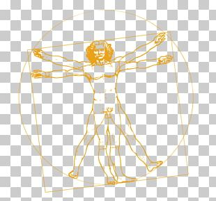 Vitruvian Man The Last Supper Codex On The Flight Of Birds Portrait Of A Man In Red Chalk Vinci PNG