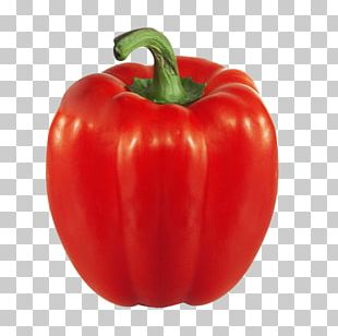 Vegetarian Cuisine Bell Pepper Vegetable Chili Pepper Food PNG