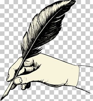 Feather Paper Quill Pen PNG