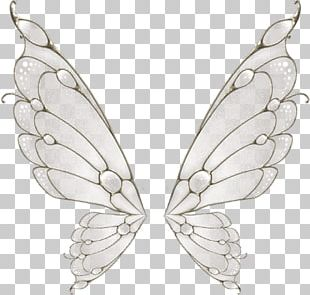 Butterfly Wing Flight Moth PNG