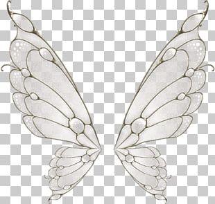 Butterfly Wing Flight Moth PNG