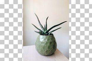 Ceramic Flowerpot Agave INAV DBX MSCI AC WORLD SF PNG