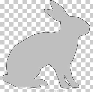 Domestic Rabbit Dog Hare Whiskers Snout PNG