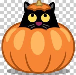 Cat Computer Icons Pumpkin PNG