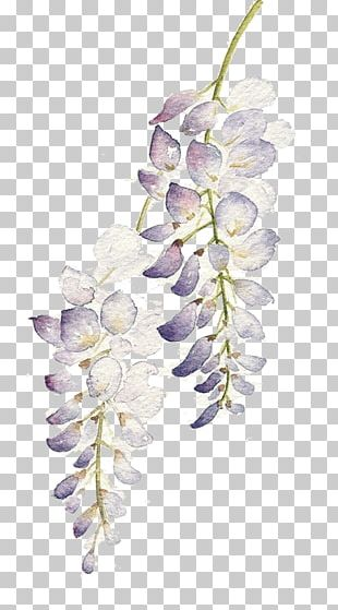 Watercolor: Flowers Watercolour Flowers Watercolor Painting PNG
