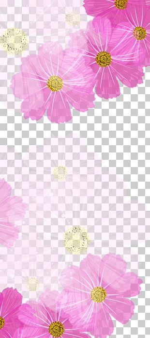 Chrysanthemum Color Purple PNG