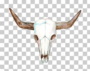 Texas Longhorn Cows Skull: Red PNG