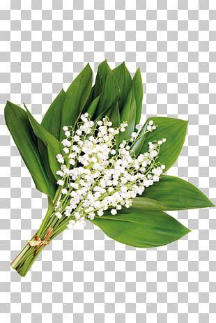 Flower Floral Design Gift PNG